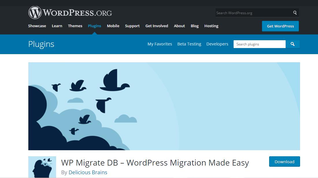 WP Migrate Db backup plugin